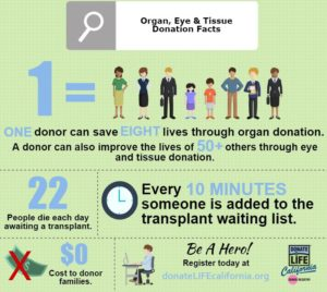 What are ways you can help support organ donation? Find out how you can help.