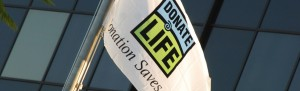 donation-saves flag