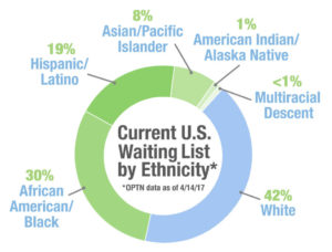 Every Community Has Opportunity, Wait list pie chart ethnicity, organ donation